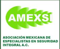 AMEXSI logo
