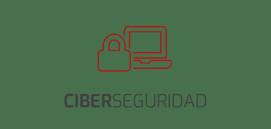 servicio Ciber Seguridad